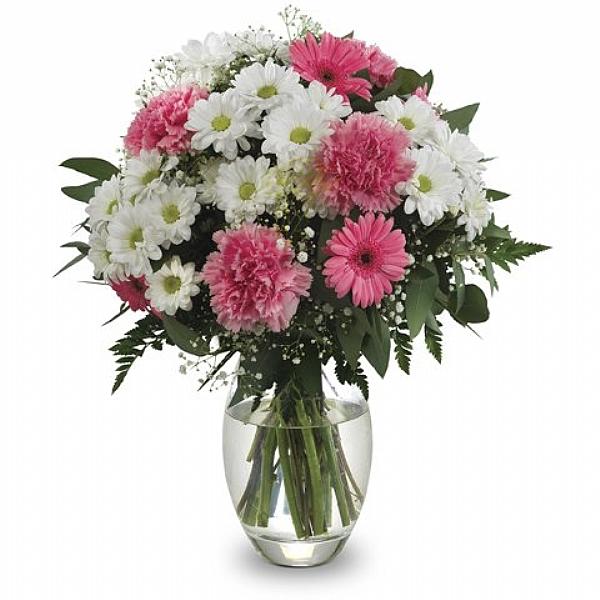 Düş Prensesi Çiçekleri